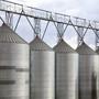 Grain Standards Training Workshops